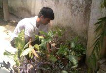 वाराणसी। विश्व पर्यावरण दिवस के शुभ अवसर पर वस्त्र दान फाउंडेशन के संस्थापक सुधांशु सिंह ने अपने आवास पर 45 पौधे लगाये और उन्होने ने कहा कि आज मानव जीवन की निरन्तरता बनाये रखने के लिए संपोष्य पर्यावरण का बने रहना आवश्यक है। इसके लिए हमें पर्यावरण एवं मानव जाति के बीच बिगड़ते संबंधों को सुधारने की जरूरत है और उन्होंने कहा कि भूमि, जल, वायु, अग्नि एवं आकाश जीवन की संरचना के मौलिक तत्व हैं जो मानव जीवन को सजाती-सँवारती हैं। उन्होंने आशा व्यक्त की हैं की हर आदमी अपने जन्मदिवस के अवसर पर एक पौधा ज़रूर लगाये व उनकी केयर भी करे अगर हम सभी ऐसे ही थोड़ा-थोड़ा प्रयास करेंगे तोह प्रकृति मे ज़रूर बदलाव आयेगा। हमारे ऋषि-मुनियों ने सृष्टि के प्रारम्भ से पर्यावरण के साथ आत्मीय संबंध रखा था। क्योंकि उन्हें वायु, जल, जंगल और जमीन का जीवन के लिए महत्ता की पूरी जानकारी थी। आज हमारे ये जीवनीय तत्व संकट में पड़ गये हैं, इन्हें उबारने हेतु मिलकर पहल करने की जरूरत है।पर्यावरण जिसमें हम सभी निवास करते हैं, उसके संरक्षण के लिए सामूहिक सहयोग की आवश्यकता है। आज अधिक से अधिक वृक्षों को लगाना समय की मांग बन गई है। हम अपनी प्राचीन पद्धतियों को अपनाकर पर्यावरण को संरक्षित कर सकते हैं। कहा कि हमें पादप जैव-विविधता संरक्षण के साथ-साथ प्राणि जैव-विविधता को भी बचाने की आवश्यकता है।व उन्होने कहा कि हम सभी लोग सार्वजनिक स्थलों पर पशुओं हेतु जल की व्यवस्था तथा अपने छतों पर पक्षियों के लिए किसी बर्तन में पानी और कुछ अनाज जरूर रखें जिससे विलुप्त हो रहे पशु-पक्षियों को जीवनदान मिल सकें।